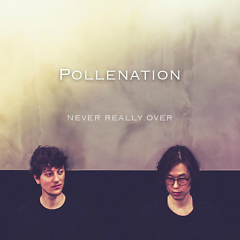 Never Really Over - Pollenation
