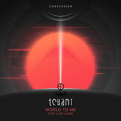 World To Me (Single) - Tchami, Luke James