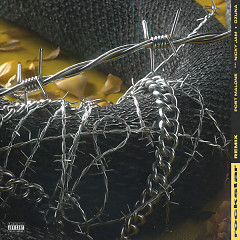 Rockstar (Remix) - Post Malone