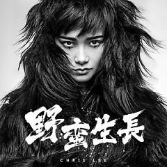 野蛮生长 / Dã Man Sinh Trưởng  - Lý Vũ Xuân