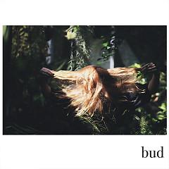 Bud (Single) - Fenne Lily