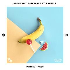 Perfect Mess (Single) - Steve Void, Navarra