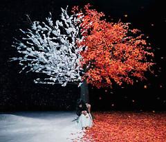Akanesasu / Everlasting Snow - Aimer