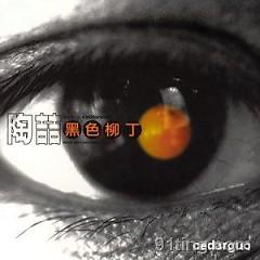 黑色柳丁/ Trái Chanh Màu Đen (CD2)