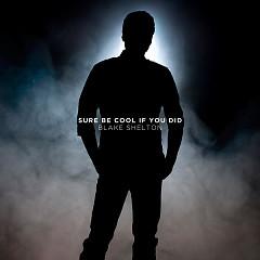 Sure Be Cool If You Did (Single) - Blake Shelton