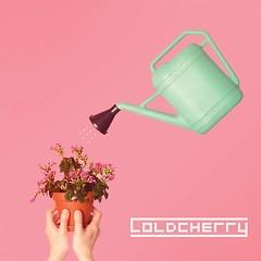 We - Cold Cherry
