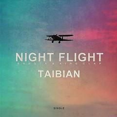 Night Flight (Single)