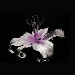 Lily Glass