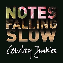 Notes Falling Slow (CD1)