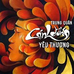 Cánh Đồng Yêu Thương (Single) - Trung Quân Idol