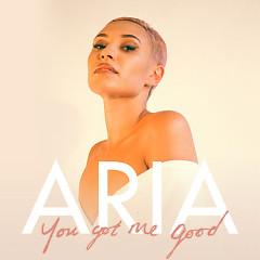 You Got Me Good (Single) - ARIA