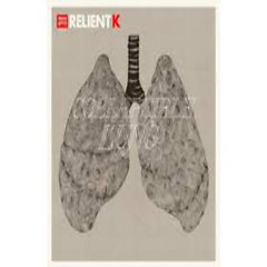 Collapsible Lung - Relient K