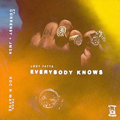 Everybody Knows (Single)