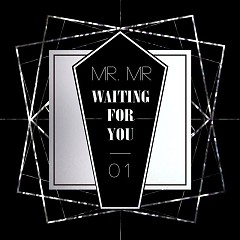 Waiting For You - Mr.Mr