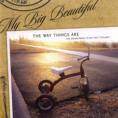 The Way Things Are - My Big Beautiful