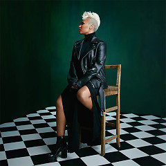 Highs & Lows (The Wild Remix) (Single) - Emeli Sandé