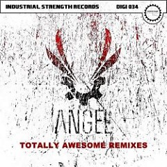 Totally Awesome Remixes - Angel
