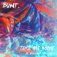 Take Me Home (Single)