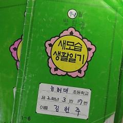 Green Diary (Single)