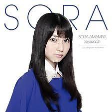 Skyreach  - Amamiya Sora