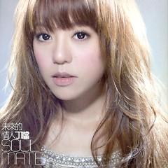 未来的情人 / Soul Mate - Đinh Đang