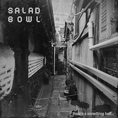 There's A Something Lost… - Salad Bowl