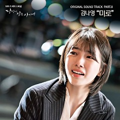 While You Were Sleeping OST Part.8 - Kim Na Young