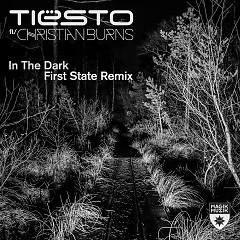 In The Dark (Single) - Tiesto