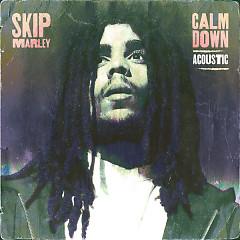 Calm Down (Acoustic) - Skip Marley