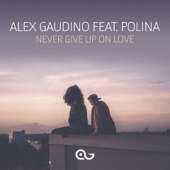 Never Give Up On Love (Single) - Alex Gaudino