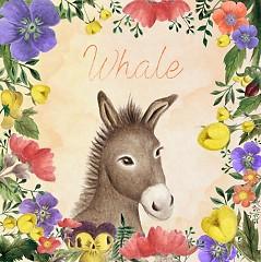 Donkey (Single)