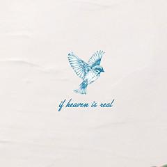 If Heaven Is Real (Single)