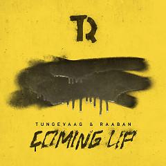 Coming Up (Single) - Tungevaag & Raaban