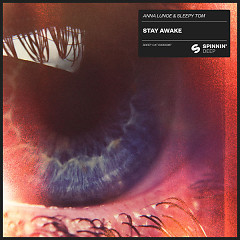 Stay Awake (Single)