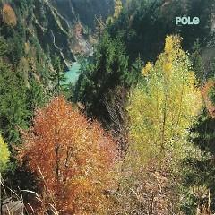 Wald - Pole
