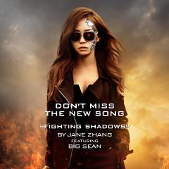Fighting Shadows (Kẻ Hủy Diệt 5 OST) - Trương Lương Dĩnh,Big Sean