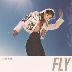 Fly (Single)