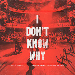 I Don't Know Why (Danny Avila Remix) (Single)
