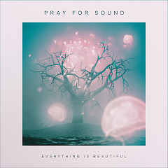 Everything Is Beautiful - Pray For Sound