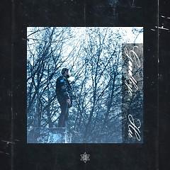 Goodbye 2013 (Single) - Hu