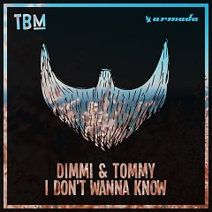 I Dont Wanna Know (Single) - DIMMI, TOMMY