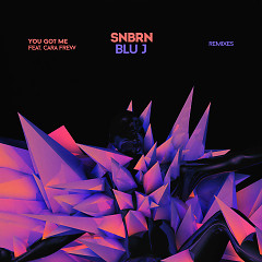 You Got Me (Remixes) - SNBRN, BLU J