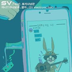 Johnny ?? Good Night ... Good Night (SV Electronic Mix) (Single) - SV