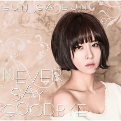 Never Say Goodbye - Eun Ga Eun