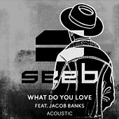 What Do You Love (Acoustic) (Single)
