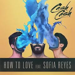 How To Love - Cash Cash,Sofia Reyes