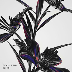 Blame (Single) - Ekali, ZHU