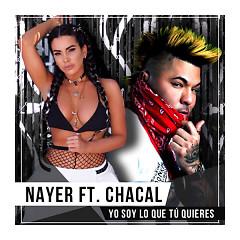 Yo Soy Lo Que Tu Quieres (Single)