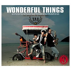 Wonderful Things (3rd Album)