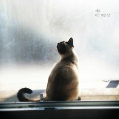 One Sunny Day - Mi Yu